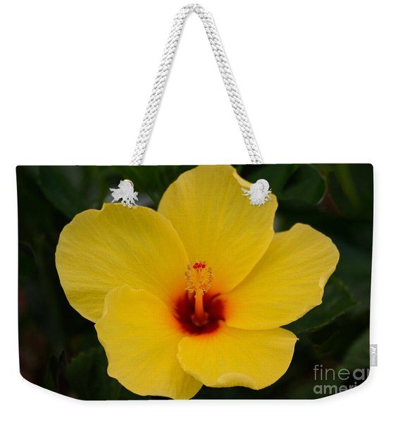 Decorative Floral Photo A9416 Weekender Tote Bag