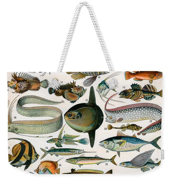 Decorative Print Of Poissons By Demoulin Weekender Tote Bag