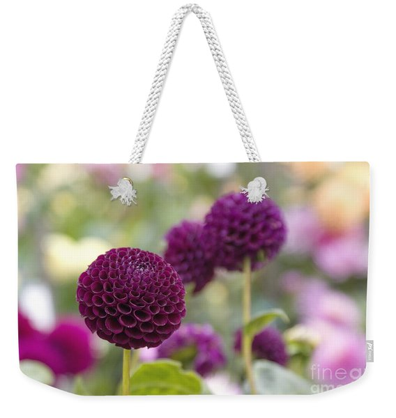 Deep Purple Dahlias Weekender Tote Bag