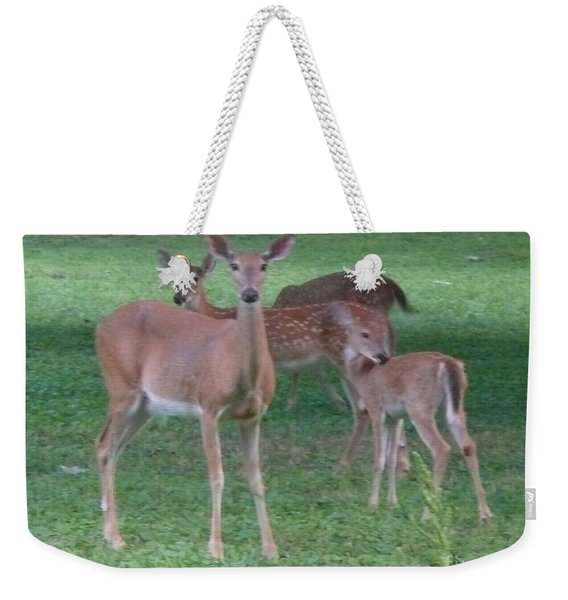 Deer Family Out For Evening Stroll Weekender Tote Bag