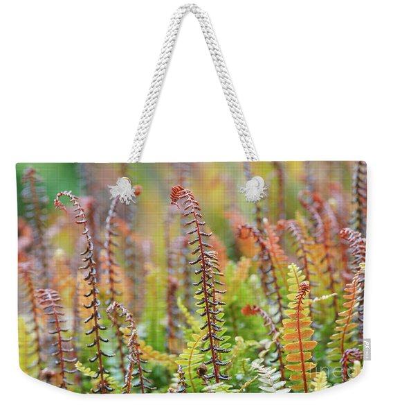 Blechnum Penna-marina Weekender Tote Bag