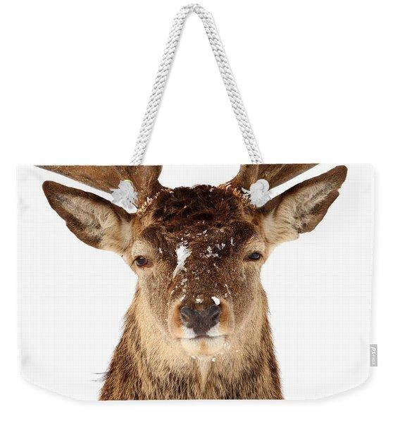 Deer In Headlights Weekender Tote Bag