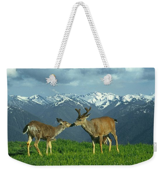 Ma-181-deer In Love  Weekender Tote Bag