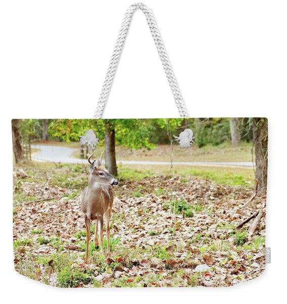 Deer Me, Are You In My Space? Weekender Tote Bag