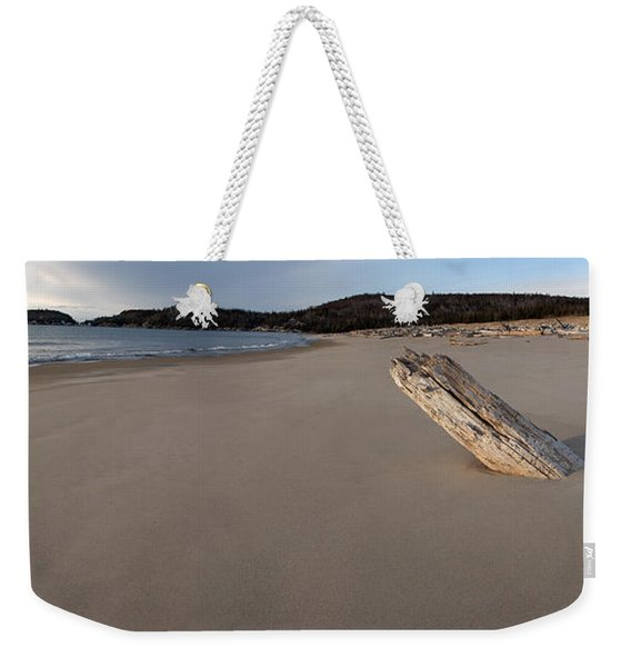 Weekender Tote Bag featuring the photograph Defiant   by Doug Gibbons