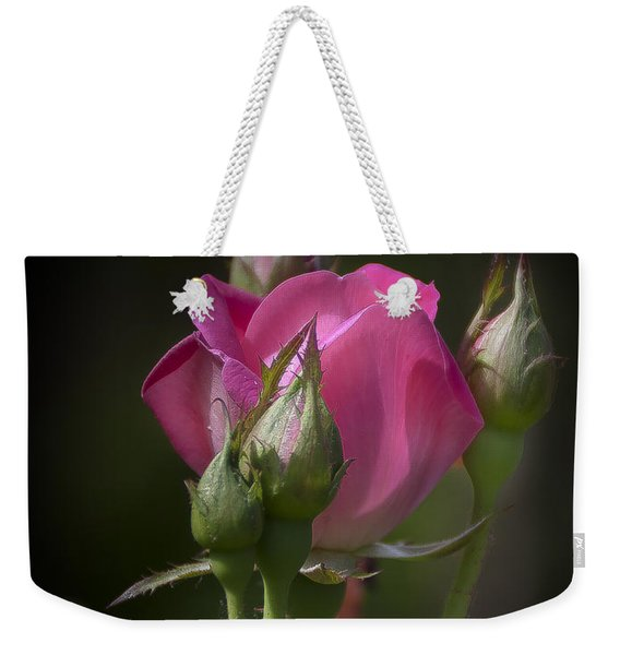 Delicate Rose With Buds Weekender Tote Bag