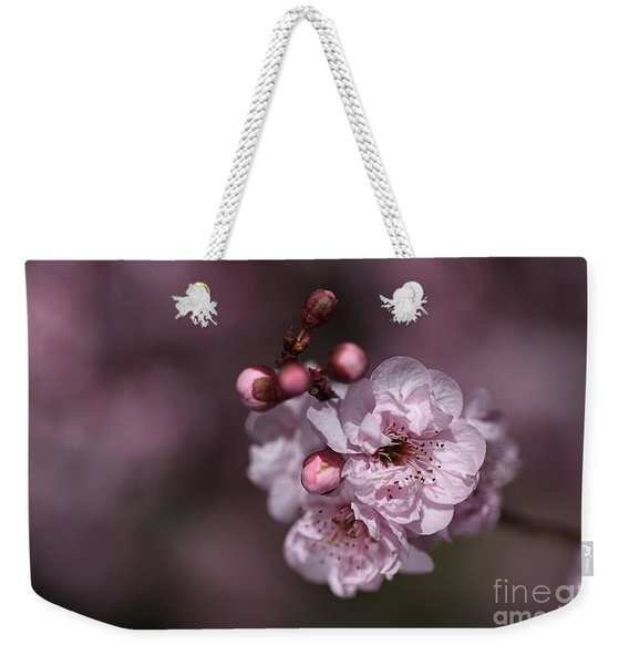 Delightful Pink Prunus Flowers Weekender Tote Bag