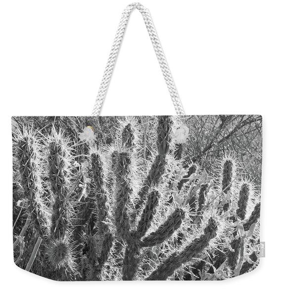 Weekender Tote Bag featuring the photograph Desert Cactus by Frank DiMarco