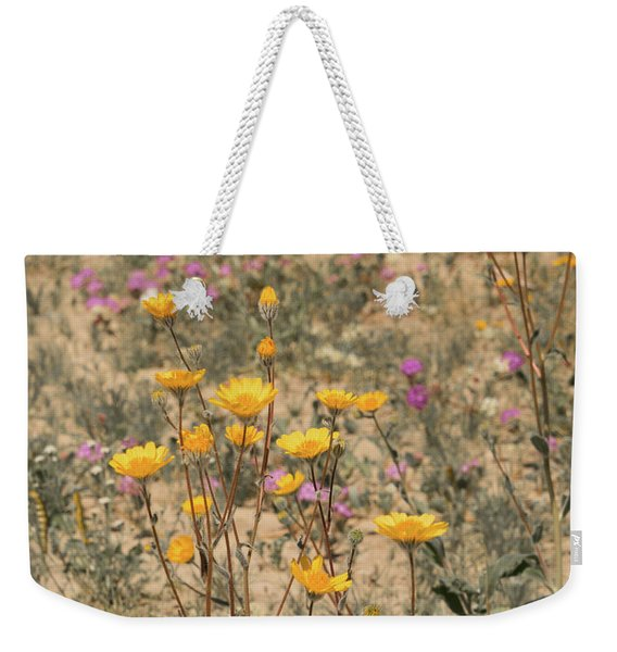 Weekender Tote Bag featuring the photograph Desert Daisy by Michael Hope