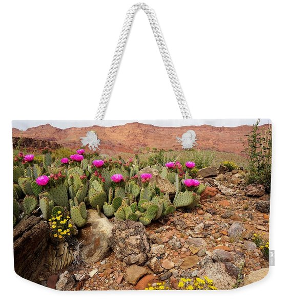 Desert Cactus In Bloom Weekender Tote Bag
