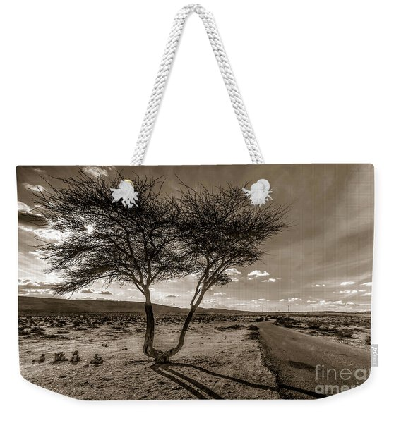 Weekender Tote Bag featuring the photograph Desert Landmarks  by Arik Baltinester