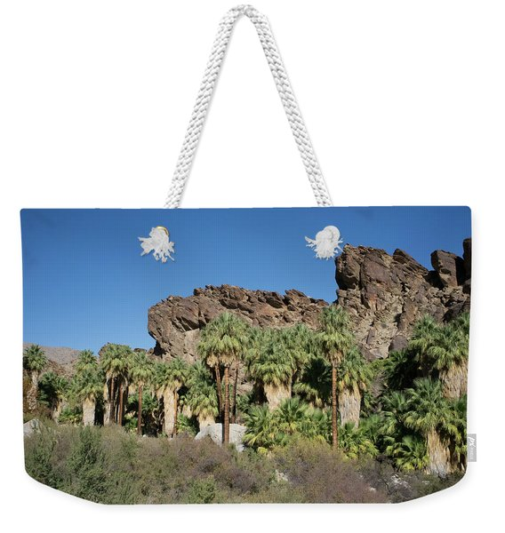 Weekender Tote Bag featuring the photograph Desert Oasis V by Frank DiMarco