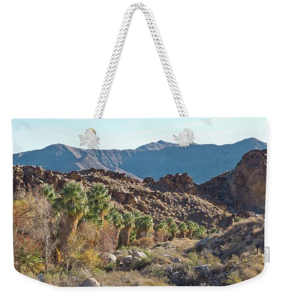 Weekender Tote Bag featuring the photograph Desert Palms by Frank DiMarco