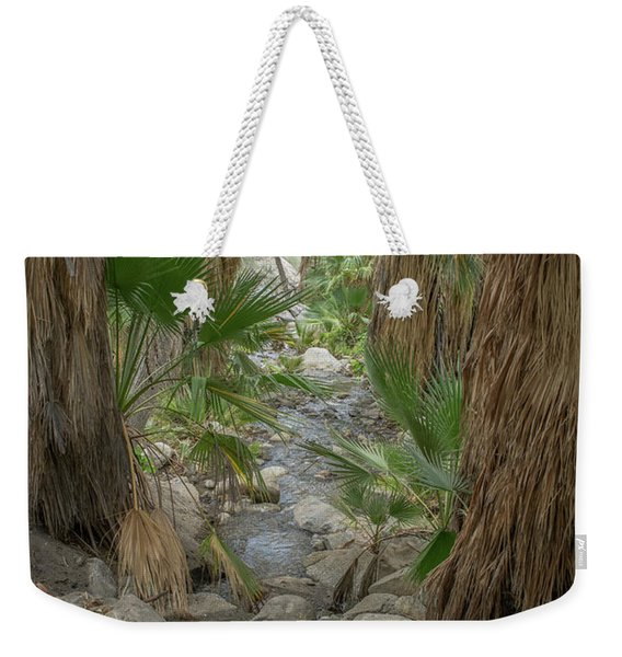 Weekender Tote Bag featuring the photograph Desert Palms Oasis by Frank DiMarco