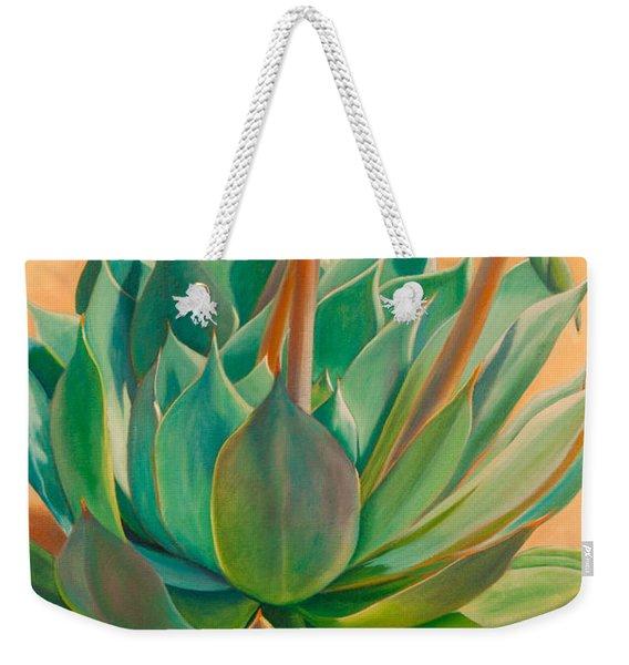 Desert Rainbow Weekender Tote Bag