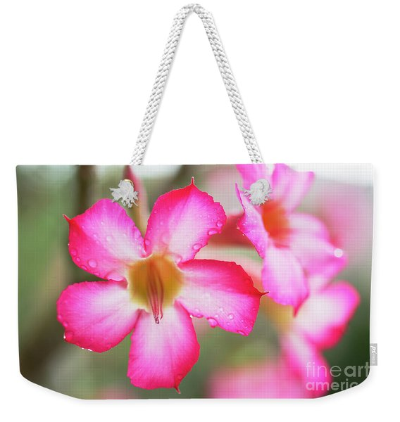 Weekender Tote Bag featuring the photograph Desert Rose Detail by Charmian Vistaunet