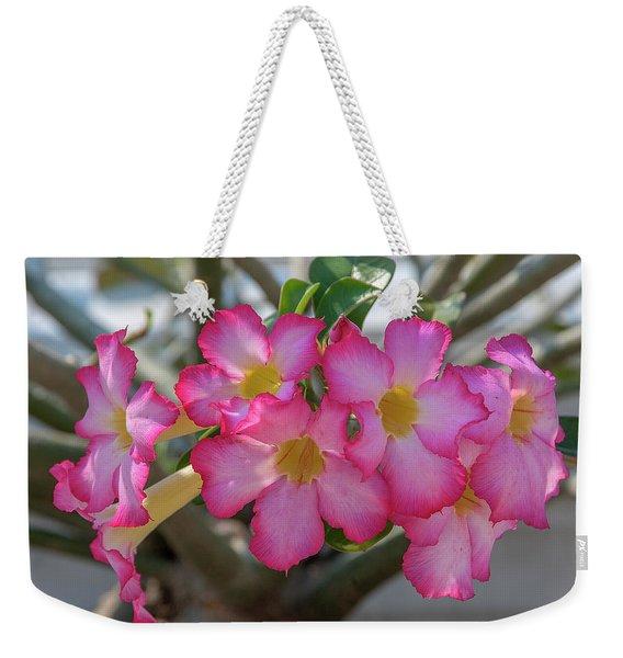 Desert Rose Or Chuanchom Dthb2105 Weekender Tote Bag
