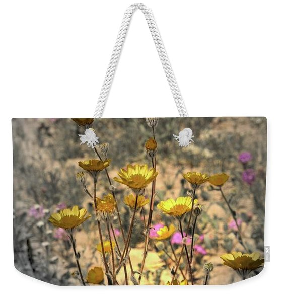 Weekender Tote Bag featuring the photograph Desert Spot Daisy by Michael Hope