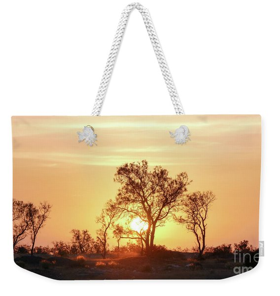 Weekender Tote Bag featuring the photograph Desert Sunset by Arik Baltinester
