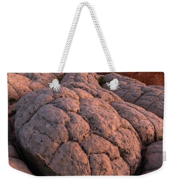 Desert Turtle Weekender Tote Bag