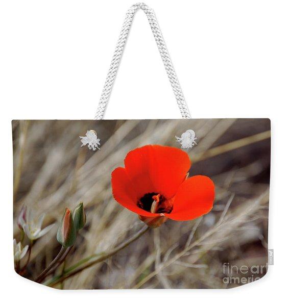 Desert Wildflower Weekender Tote Bag