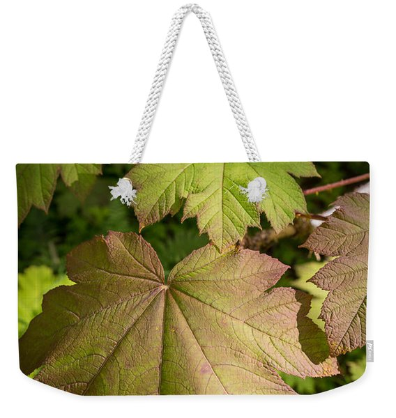 Weekender Tote Bag featuring the photograph Devil's Club by Tim Newton