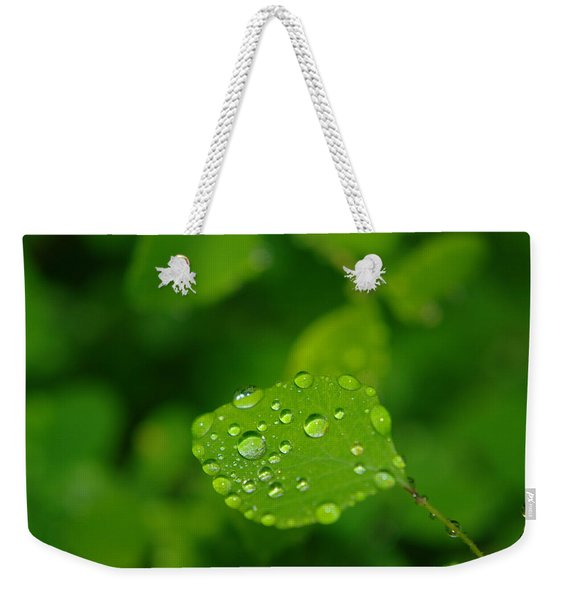 Dew Dappled Leaf Weekender Tote Bag