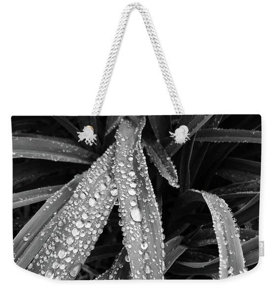 Dew Drops Await The Sun Weekender Tote Bag