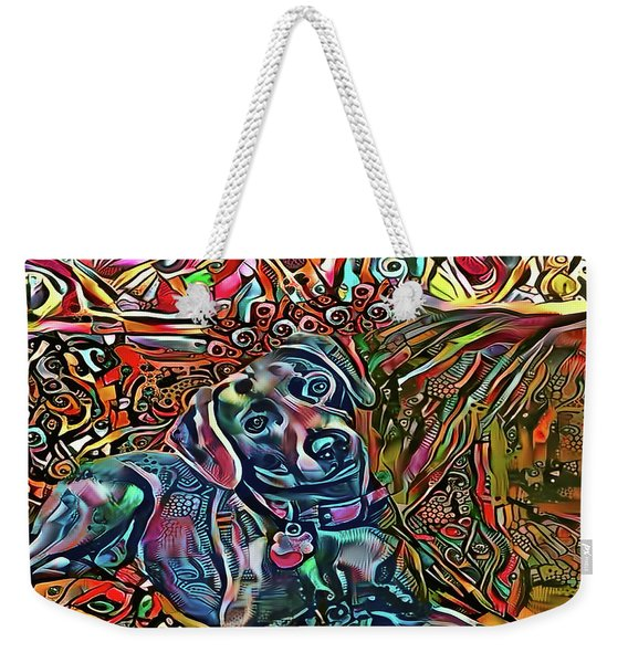 Did Somebody Say Treat? Blue Lacy Dog Weekender Tote Bag