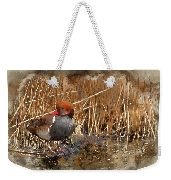Digital Watercolour Painting Of Beautiful Portrait Of Red Crested Pochard In The Wild Weekender Tote Bag