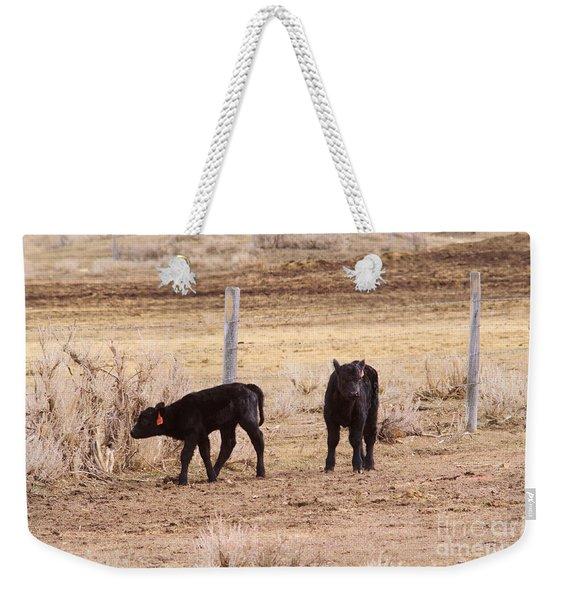 Do Calves On The Fence Line Weekender Tote Bag