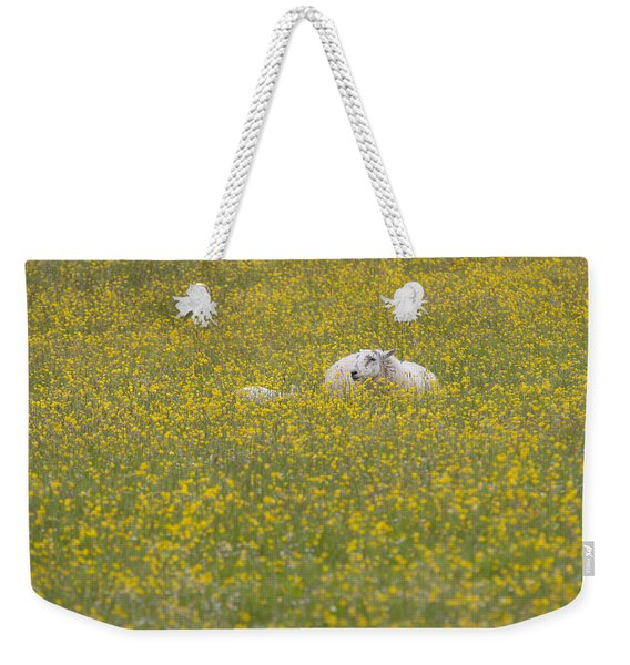 Do Ewe Like Buttercups? Weekender Tote Bag