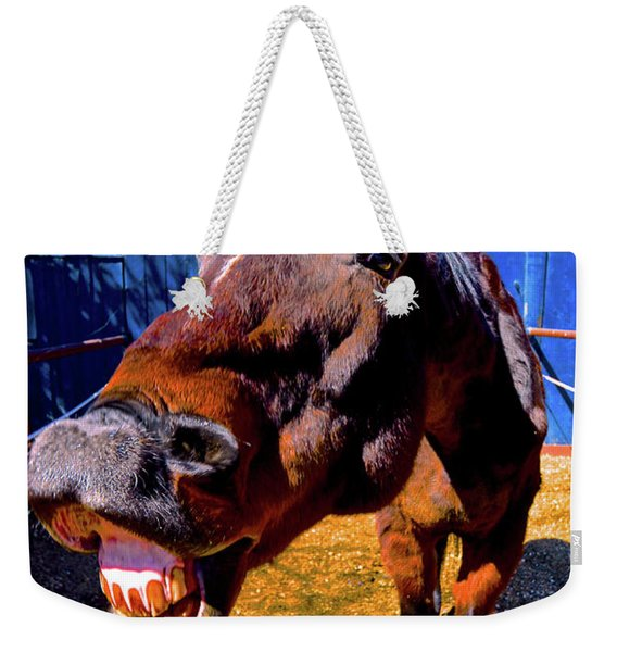 Do You Have A Treat For Me? Weekender Tote Bag