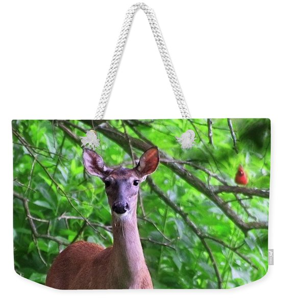 Doe And Cardinal Weekender Tote Bag
