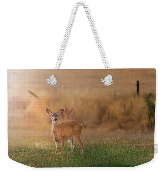 Doe At Sunset Weekender Tote Bag