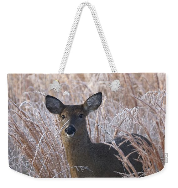 Doe In Winter Weekender Tote Bag