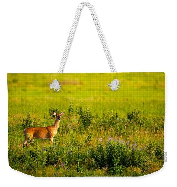 Whitetail Doe In Prairie Clover Weekender Tote Bag