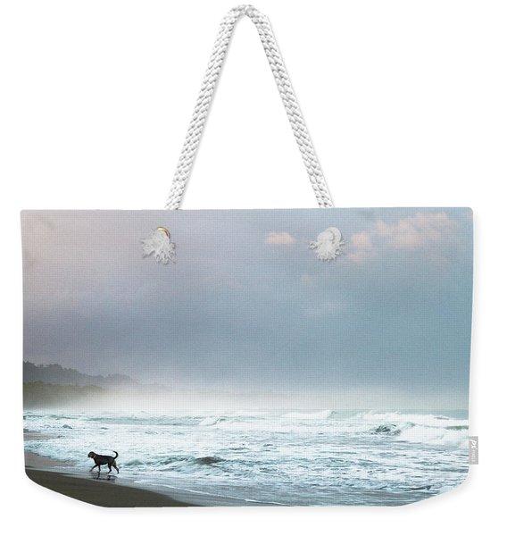 Dog On A Costa Rica Beach Weekender Tote Bag