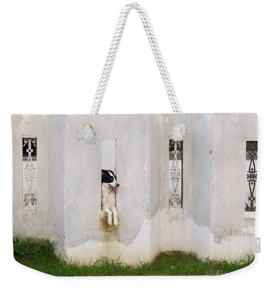 Dog Watching Weekender Tote Bag