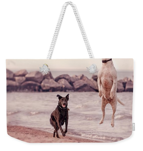 Dog With Frisbee Weekender Tote Bag