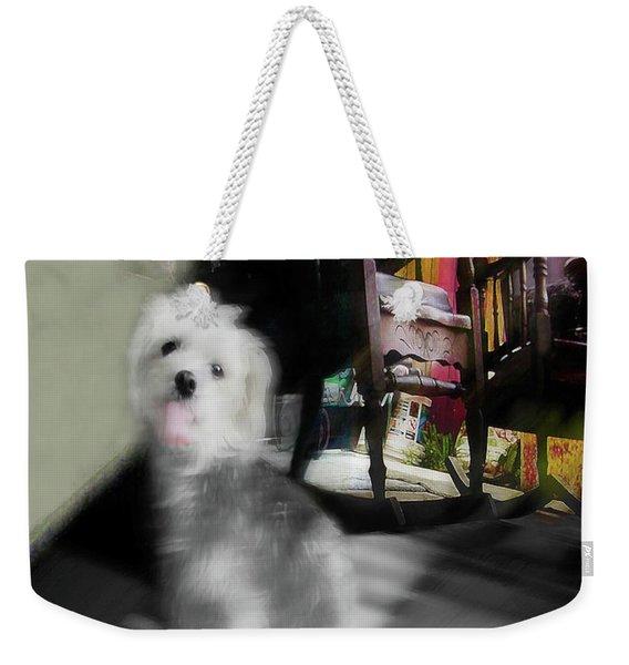 Dogie In The Patio Art  Weekender Tote Bag