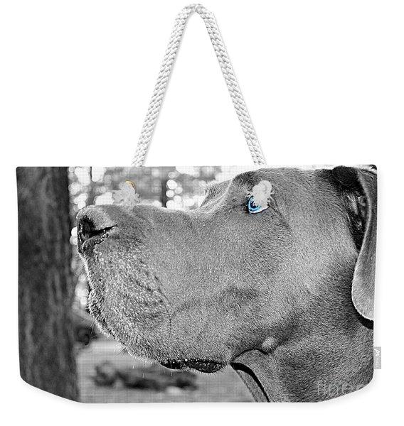 Dogus Weekender Tote Bag