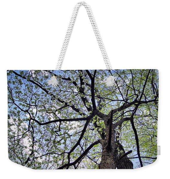 Dogwood Canopy Weekender Tote Bag