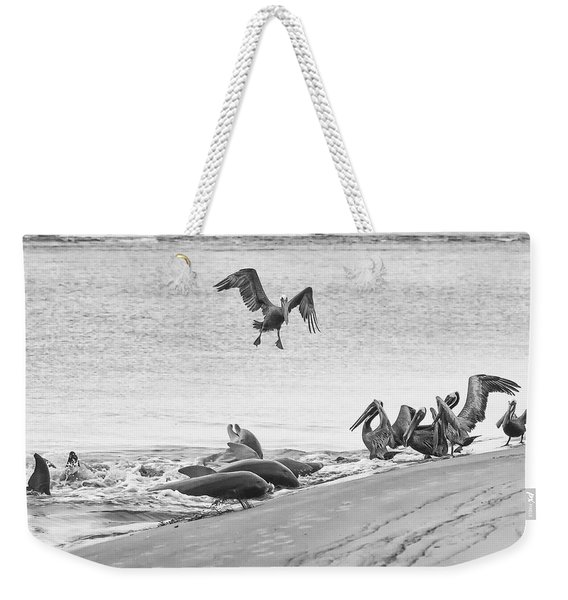 Dolphin And Pelican Party Weekender Tote Bag