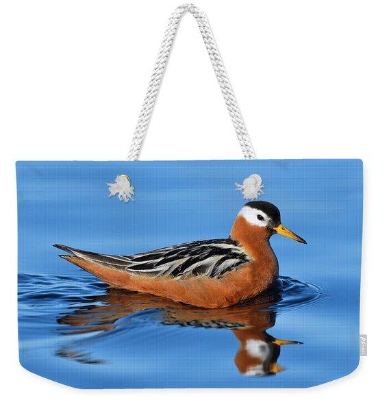 Dominatrix Weekender Tote Bag