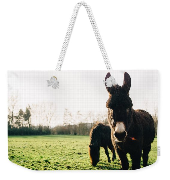 Donkey And Pony Weekender Tote Bag