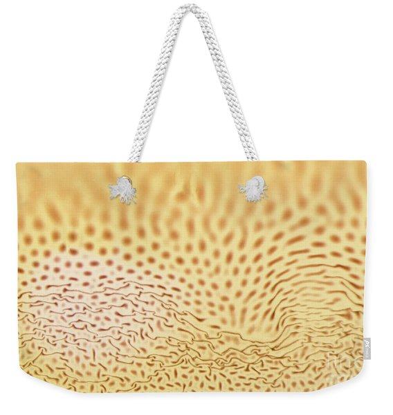 Dots And Lines Weekender Tote Bag