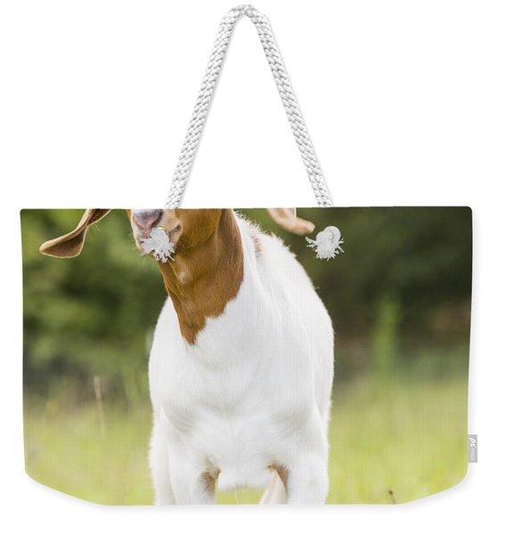 Dougie The Goat Weekender Tote Bag
