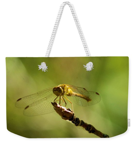 Dragonfly Perched Weekender Tote Bag