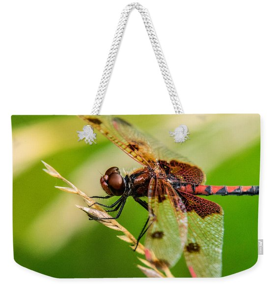 Dragonfly Resting On Grass Seed Weekender Tote Bag